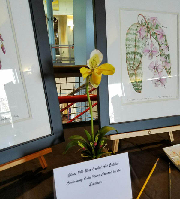 Shreveport louisiana orchid society hosts another great for Craft shows louisiana 2017